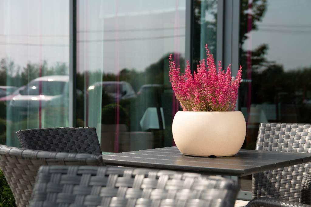 Balkonowych Kwiatów Urok Flowerpotspl